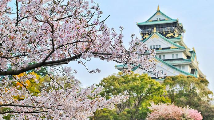 ciresii_japonezi_vor_inflori_mai_repede_in_2021_poza_reprezentativa